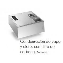Condensación (2 entradas) de vapor y olores con filtro de carbono.